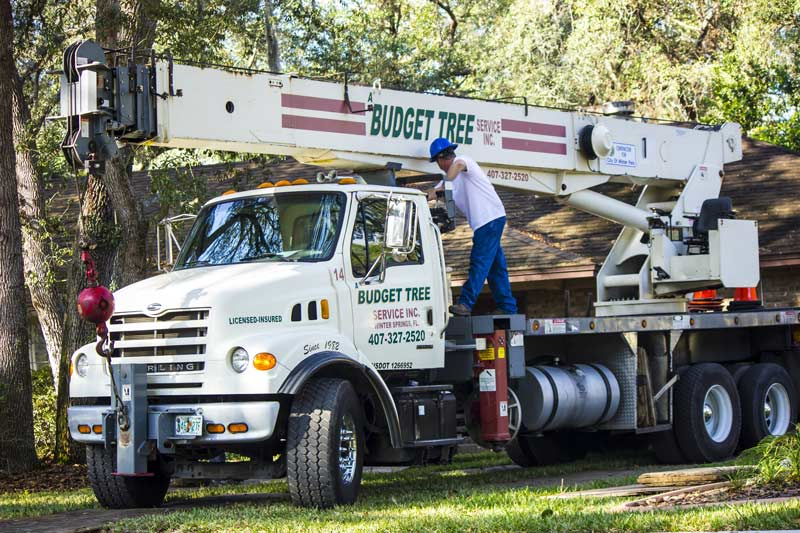 A Budget Tree Service, Inc's crane with employee standing on side