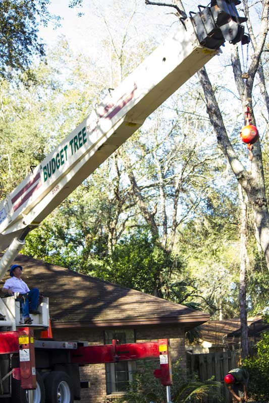 Crane Services in Orlando, FL